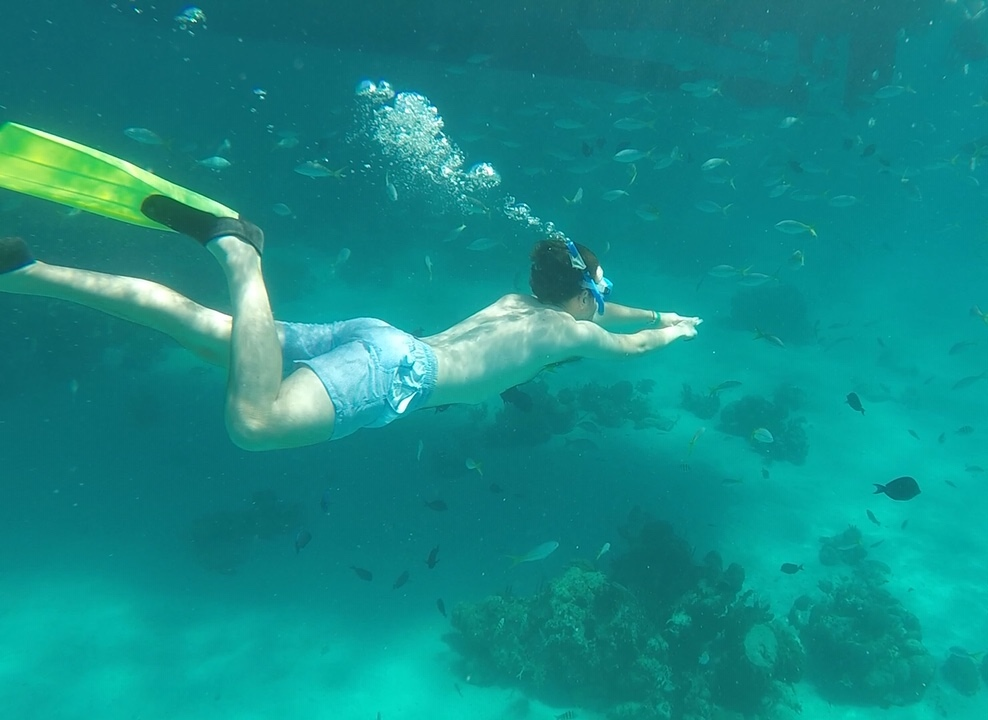 Cayo Largo - snorkel
